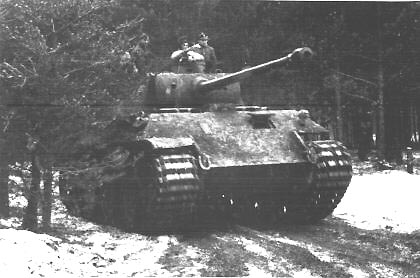 [PHOTO OF PANTHER ROUNDING A BEND]